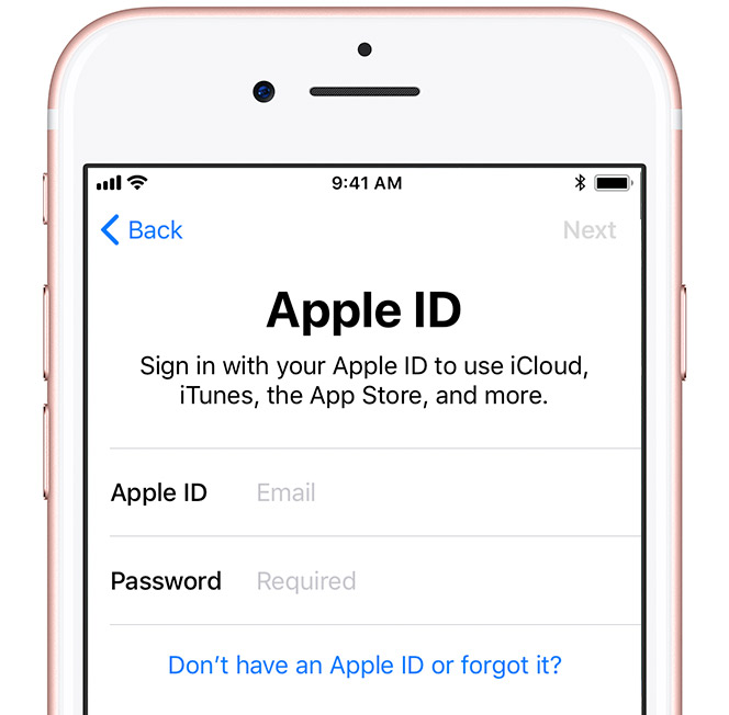 type your apple id - How to set up your iPhone (Step by Step Guide)