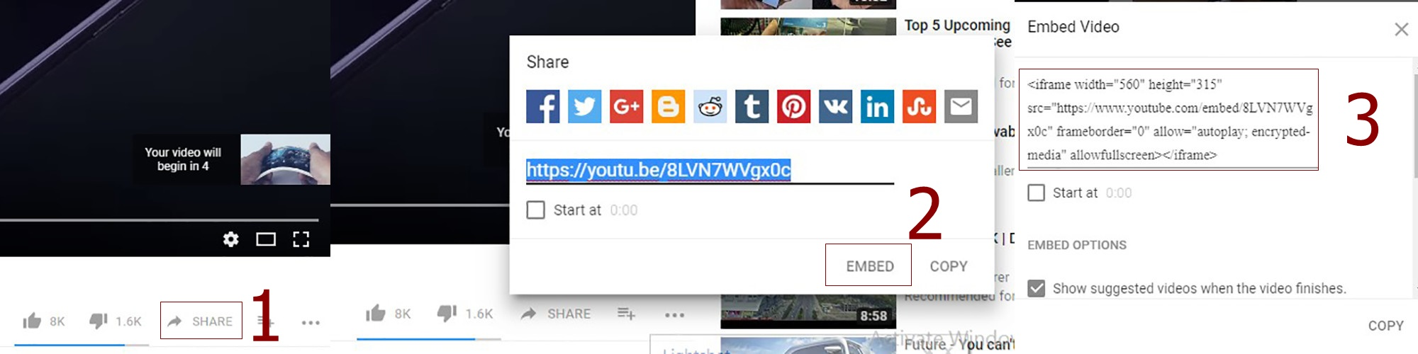 embed a youtube video in powerpoint - Homepage